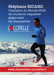 chaussettes-coccinelle_affiche-stephane-ricard_800.jpg